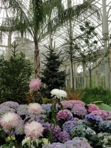 Crystal Palace Plant Exhibit in Retiro Park Madrid