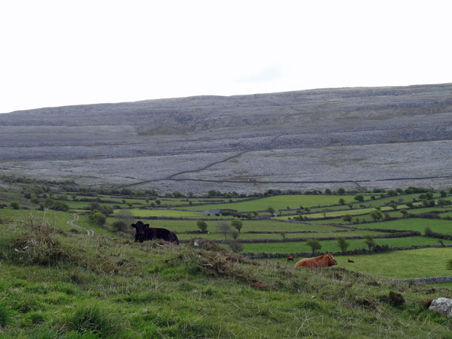 Burren Region in Ireland