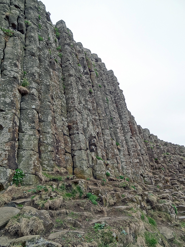 Tall Basalt Columns at The Giants Causeway