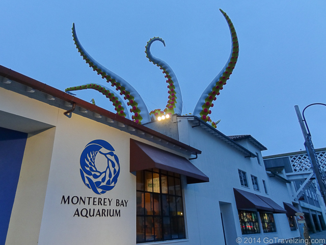 Inflatable tentacles rising from the roof of the Monterey Bay Aquarium